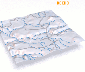 3d view of Becho