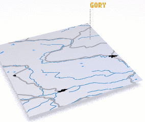 3d view of Gory