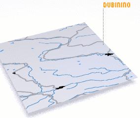 3d view of Dubinino
