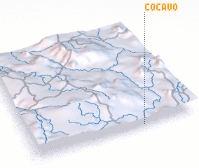 3d view of Cocauo
