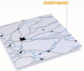 3d view of Vishnyakovo