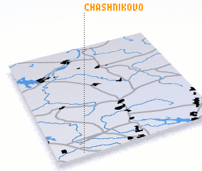 3d view of Chashnikovo