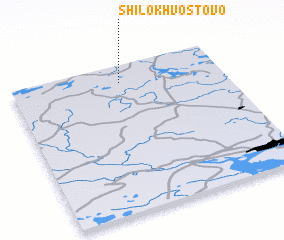 3d view of Shilokhvostovo