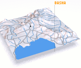 3d view of Basha