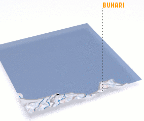 3d view of Buhari
