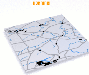 3d view of Domninki