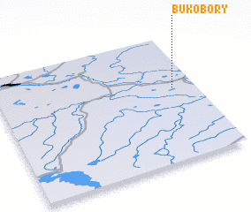 3d view of Bukobory