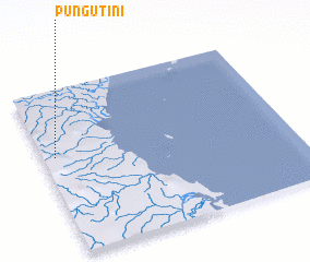 3d view of Pungutini