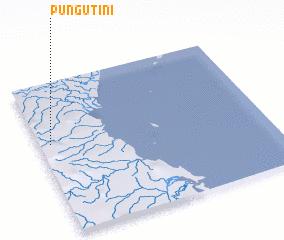 3d view of Pungutini