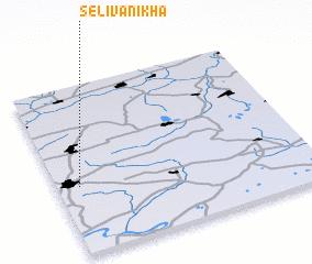 3d view of Selivanikha
