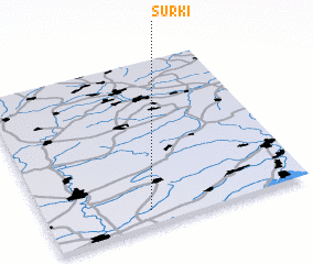 3d view of Surki