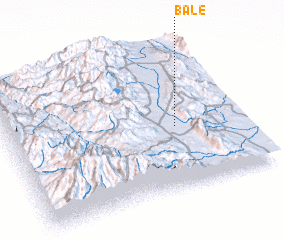 3d view of Bale