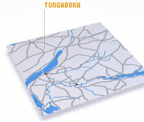 3d view of Tunga Boka