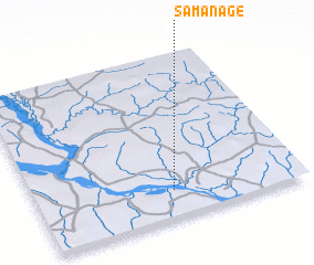 3d view of Samanage