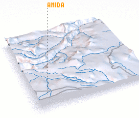 3d view of Amida