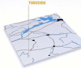 3d view of Torusino