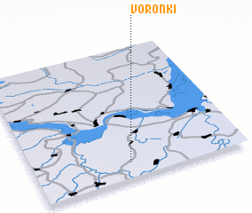 3d view of Voronki