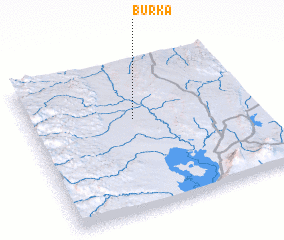 3d view of Burka