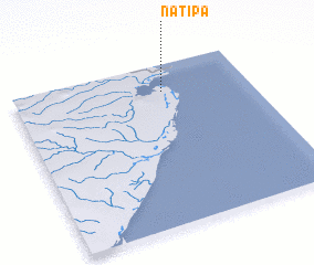 3d view of Natipa