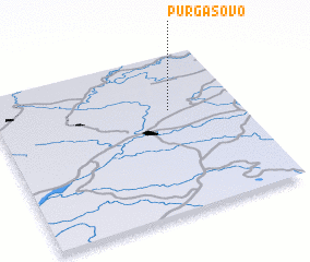 3d view of Purgasovo