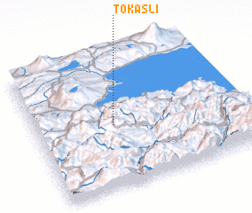 3d view of Tokaşlı