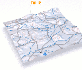 3d view of Tahir
