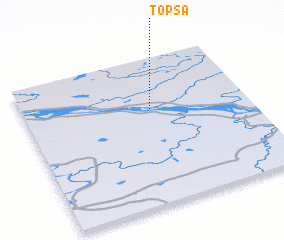 3d view of Topsa