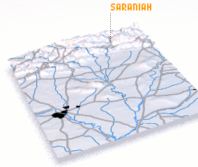 3d view of Sarānīah