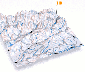3d view of Tib