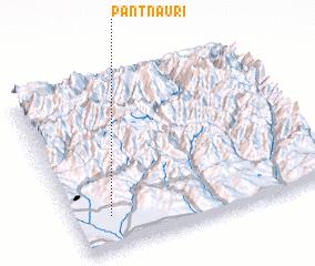 3d view of Pantnauri