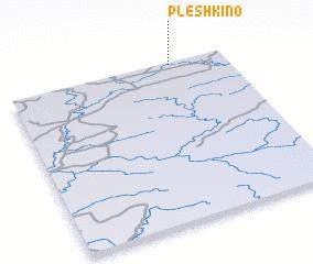 3d view of Pleshkino