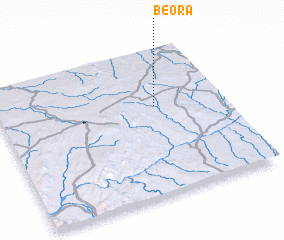 3d view of Beora
