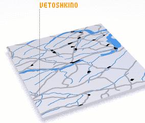 3d view of Vetoshkino