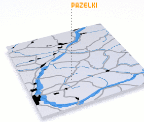 3d view of Pazelki