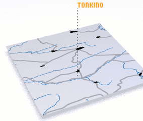 3d view of Tonkino