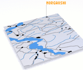 3d view of Morgaushi