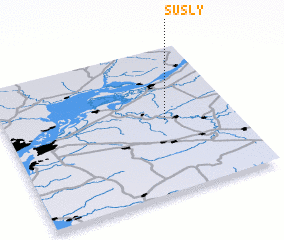 3d view of Susly