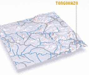 3d view of Tongokazo