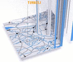 3d view of Tumaslı