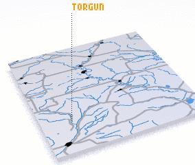 3d view of Torgun