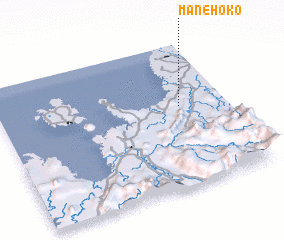 3d view of Manehoko