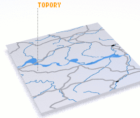 3d view of Topory