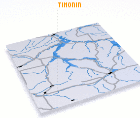 3d view of Timonin