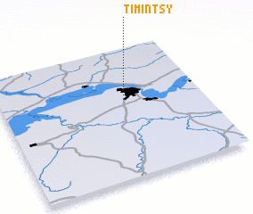 3d view of Timintsy