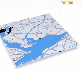 3d view of Tanino