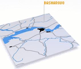 3d view of Basharovo