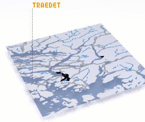 3d view of Trædet