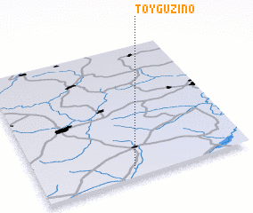3d view of Toyguzino