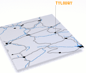 3d view of Tylovay