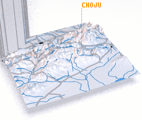 3d view of Chojū